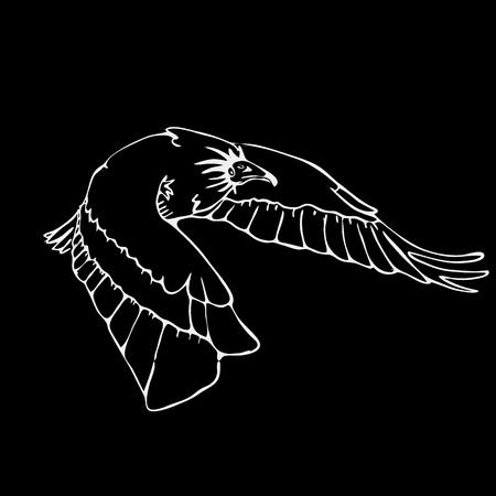 scavenger: Hand-drawn pencil graphics, vulture, eagle, osprey, falcon, hawk, scavenger. Engraving, stencil style. Black and white logo, sign, emblem, symbol. Stamp, seal. Simple illustration. Sketch.