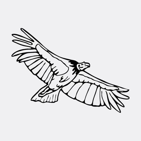 Hand-drawn pencil graphics, vulture, eagle, osprey, falcon, hawk, scavenger, condor. Engraving, stencil style. Black and white logo, sign, emblem, symbol. Stamp, seal. Simple illustration. Sketch.