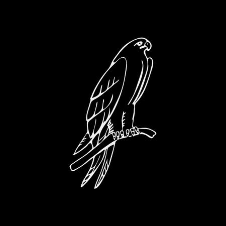 osprey: Hand-drawn pencil graphics, vulture, eagle, osprey, falcon, hawk, scavenger, condor, karkar, kite. Engraving, stencil style. Bird predator. Black and white logo, sign, emblem, symbol. Stamp, seal. Simple illustration. Sketch. Illustration