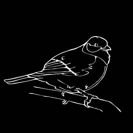 chickadee: Hand-drawn pencil graphics, bird, lark, oriole, chickadee, sparrow, blackbird, nightingale, finch, bunting, hangbird, goldfinch, raven, magpie, woodpecker, canary, bullfinch, siskin. Engraving, stencil style. Black and white logo, sign, emblem, symbol. St