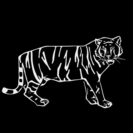 Hand-drawn pencil graphics, tiger head. Engraving, stencil style. Black and white logo, sign, emblem, symbol. Stamp, seal. Simple illustration. Sketch.