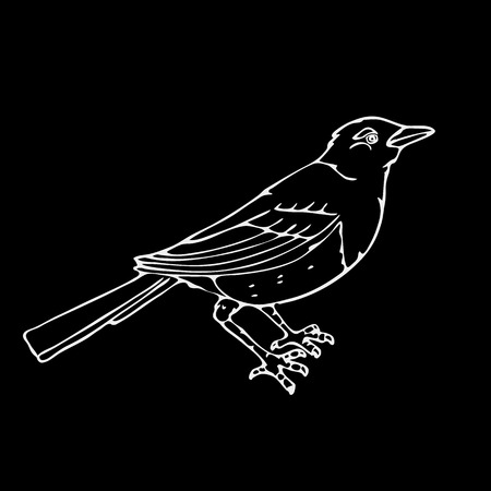 Hand-drawn pencil graphics,small bird, magpie, bird. Engraving, stencil style. Black and white logo, sign, emblem, symbol. Stamp, seal. Simple illustration. Sketch.