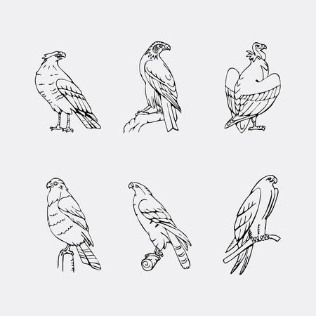 osprey: Cool Birds of prey set. Bird engraved style emblem. Hand drawn style. Linocut, stencil vector art. Black and white, minimal.