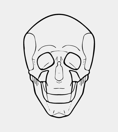 Hand drawn black and white skull. Logo, poster. Stencil or engraved style. Illustration