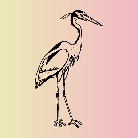 Hand-drawn pencil graphics, heron. Engraving, stencil style. Logo, sign, emblem, symbol. Stamp, seal. Simple illustration. Sketch.