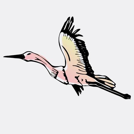 Hand-drawn pencil graphics, stork, swan. Engraving, stencil style. Logo, sign, emblem, symbol. Stamp, seal. Simple illustration. Sketch.