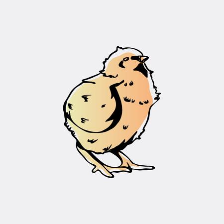 Hand-drawn pencil graphics, chicken, chick. Engraving, stencil style. Logo, sign, emblem, symbol. Stamp, seal. Simple illustration. Sketch. Illustration