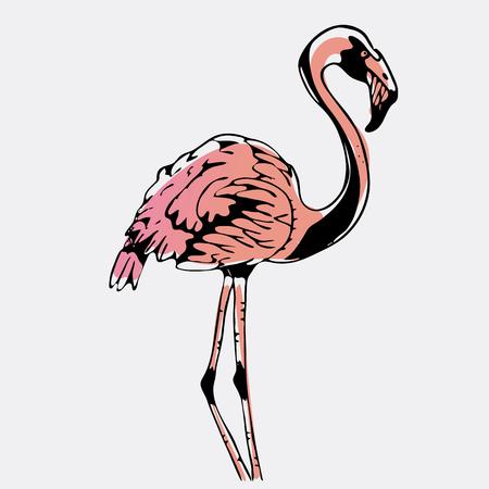 Hand-drawn pencil graphics, bird, flamingo. Engraving, stencil style. Logo, sign, emblem, symbol. Stamp, seal. Simple illustration. Sketch.