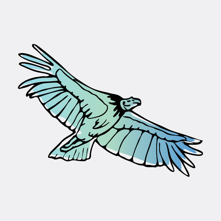 Hand-drawn pencil graphics, vulture, eagle, osprey, falcon, hawk, scavenger, condor, karkar, kite.Engraving, stencil style. Bird predator.Logo,sign,emblem,symbol Stamp,seal. Simple illustration Sketch Stock Vector - 81497226