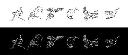 Hand-drawn pencil graphics of birds set vector illustration