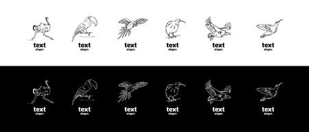 Hand-drawn pencil graphics, birds set. Engraving, stencil style. Black and white logo, sign, emblem, symbol. Stamp, seal. Simple illustration. Sketch.
