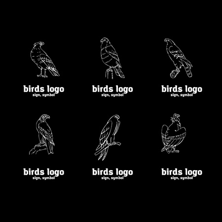 Birds of prey set. Bird engraved style emblem. Hand drawn style. Linocut, stencil vector art. Black and white, minimal.