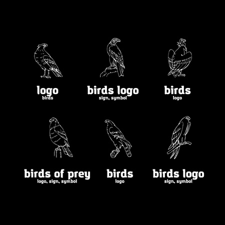 Birds of prey set. Bird engraved style emblem. Hand drawn style. Linocut, stencil vector art. Black and white, minimal. Vector Illustration