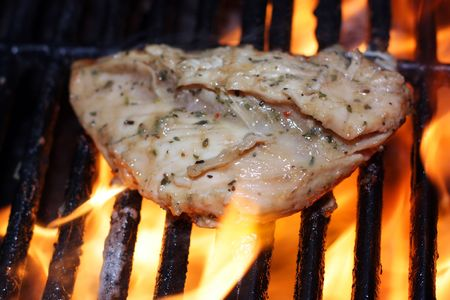 Grilling Chicken Stock Photo - 6338416