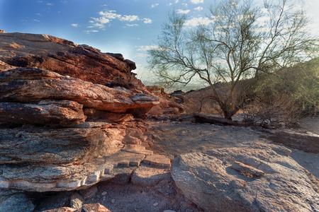 Hiking Mormon Trail overlooking Phoenix Arizona