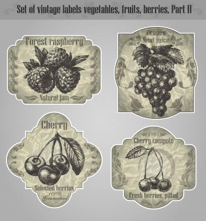 eingestellt Weinleseaufklebern Obst, Gemüse, Beeren - inspiriert durch florale Retro-Originale