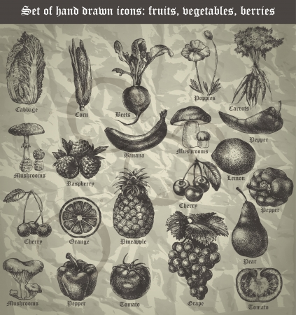 vegatables: set icon of fruits, vegetables, berries for the menu in vintage style Illustration