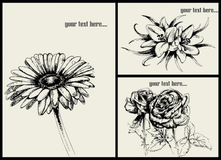set: vector flowers Illustration