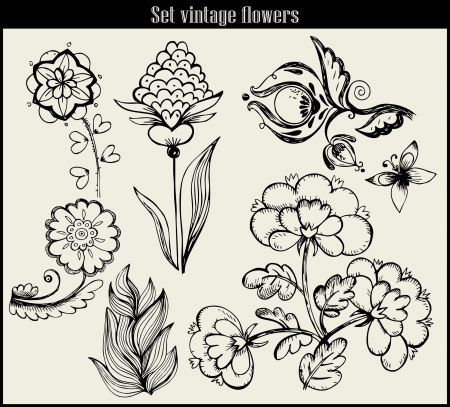 highly: Flower set: highly detailed