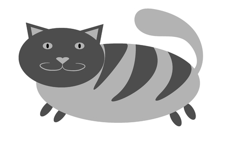 Gray thick, tabby cat with short paws and a large snout with ears protruding upwards on a white background. Vector illustration. 向量圖像