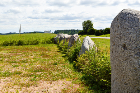 The texture of a large garden garden of stones of round stones standing in a row in order on a favorable background. The background. Stock Photo