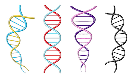 A set of four multicolored beautiful medical scientific twisted structures of spirals of abstract models of DNA genes on a white background. Vector illustration.