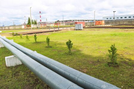 Two large pipes for pumping liquid gasoline oil on the background of seedlings of new small green trees. Concept: ecology at an industrial plant, landscaping of an oil refinery.