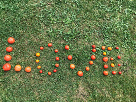A word from a tomato, letters L, O, V, E. The word LOVE. Letters from red and yellow tomatoes on green grass. Healthy food, weight loss. Healthy habits, tomatoes for pasta and pizza.