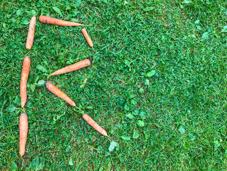 carrot letters lie on the lawn. letter r on the grass. vitamin alphabet. creative lettering. letters for composing words. creative edible letter. carrot word.