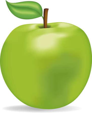Appetitlich gr�ner Apfel Illustration