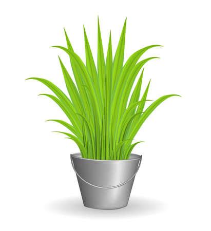 Green grass in an iron bucket Illustration
