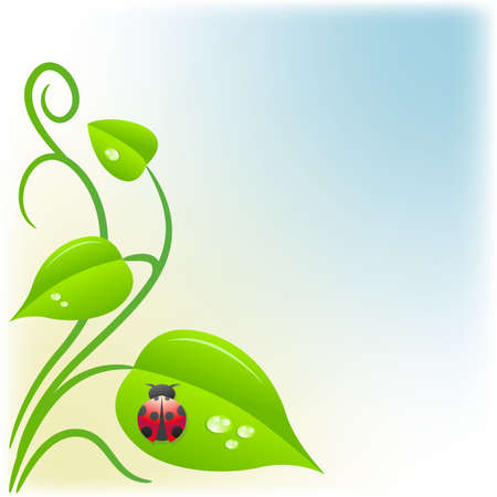 Background with green leaves and a ladybug Illustration