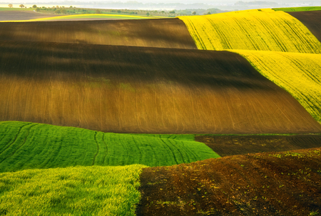 Fields.Czech Republic. South Moravia. Around town Kyjov.