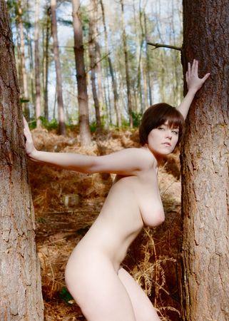 Hermosa mujer morena desnuda en el bosque Foto de archivo - 4976814