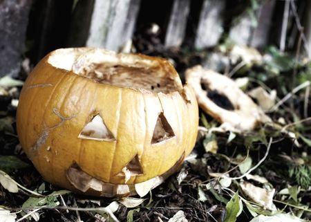 putrid: Putrid Pumpkin after Halloween