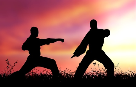 sambo: High resolution graphic of two Mixed Martial Artists