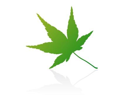 gradiant: Isolated vector leaf on white background. Illustration
