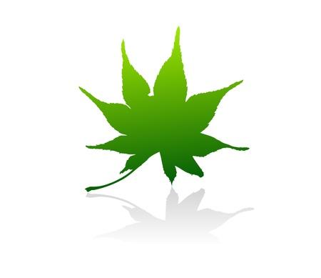 gradiant: Isolated green vector leaves on white background. Illustration
