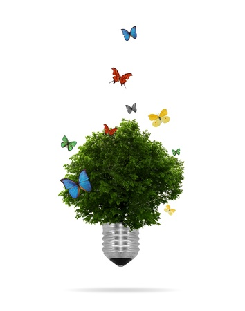 welfare plant: High resolution graphic of a lightbulb with tree growing inside surrounded by colorful butterflies.  Stock Photo