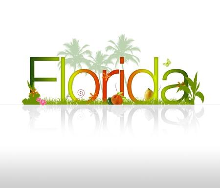 Alta resolución gráfica de Florida sobre fondo blanco Foto de archivo - 9675444