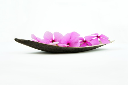 Boat of flowers isolated on White backgrund photo