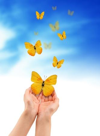 Handen die een gele vlinder die op cloud achtergrond. Stockfoto