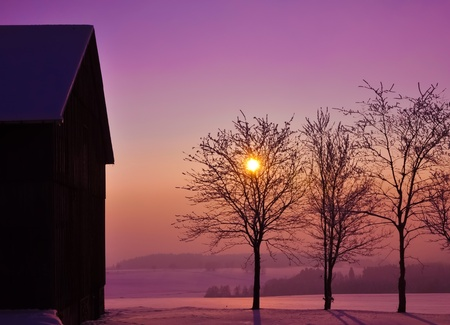 Beautiful countryside winter sunset with backlit trees.  photo