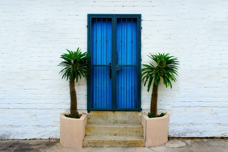 White wall brick background with blue door and palm trees.  photo
