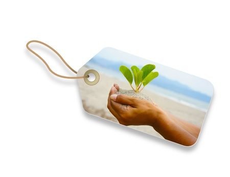 compost: Environmental friendly label of a hand holding a plant.