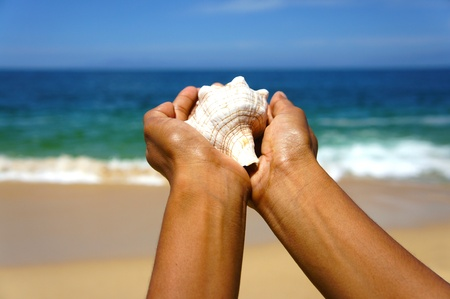 Female hands holding a seashell on a tropical beach with blue water in the background.  photo