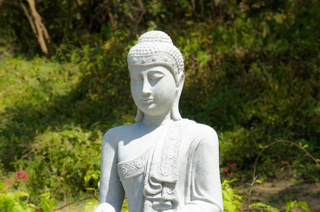 Tian Tan Buddha Statue sitting in front of a  forrest background.  photo
