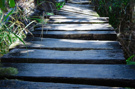 moos: Close up view of an old twisted wooden bridge