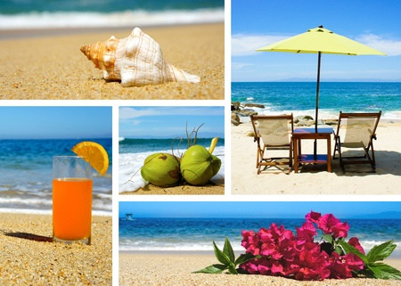 land shell: Tropical beach landscape collage with five different fotos