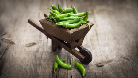 Green Jalapenos chili pepper in a miniature wheelbarrow on wood background photo